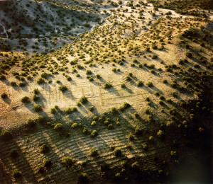Logsdon-Farmland-Anasazi