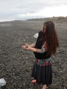 MK-beach-shells